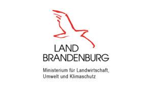Forstausschuss der obersten Forstbehörde des Landes Brandenburg